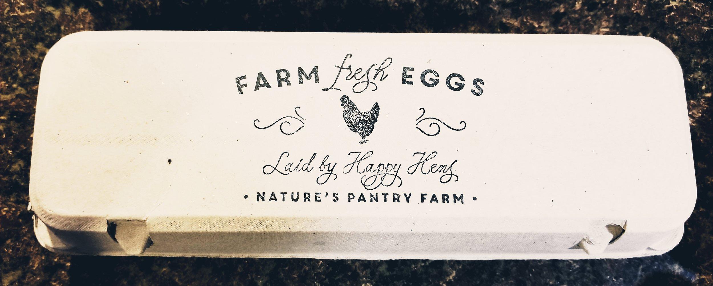 egg carton.jpg