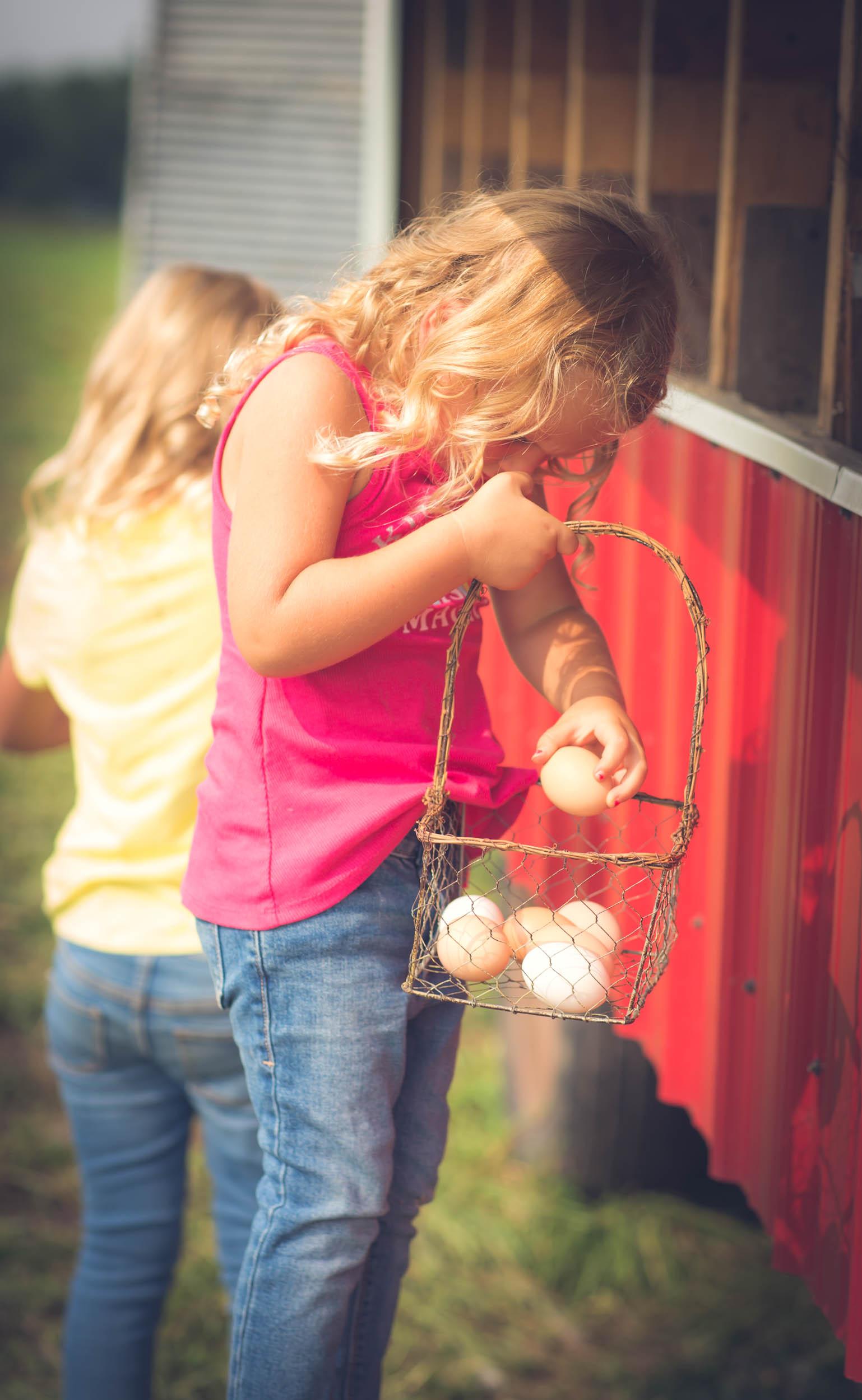 kate egg.jpg