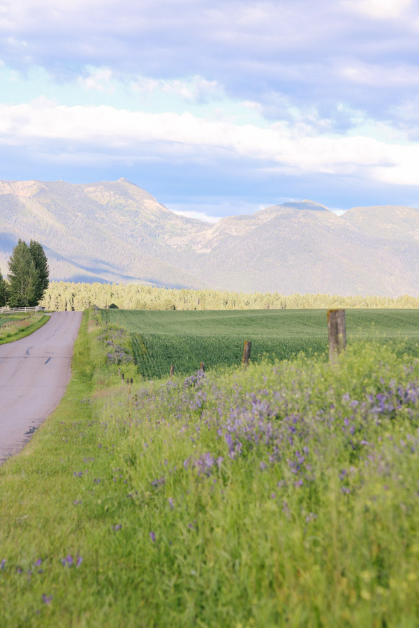 What To Do In Northwest Montana - by Courtney Brown