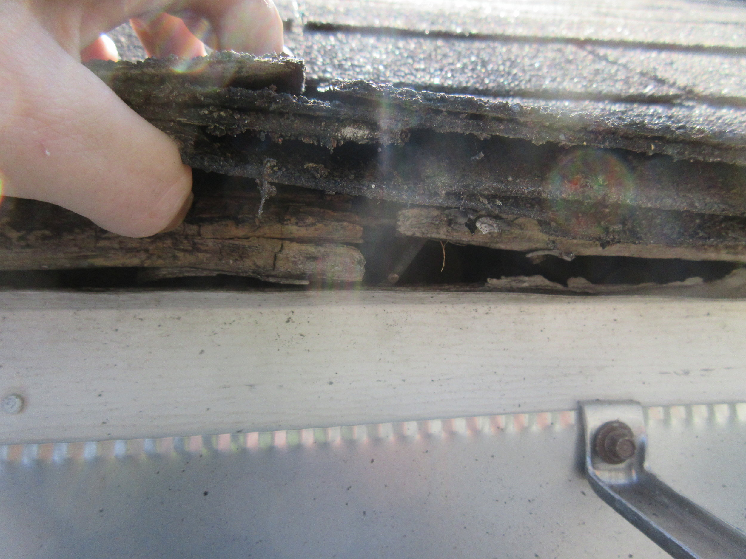 Roof covering did not extend enough past roof line allowing water to wick into roof decking. Because of this,there is moisture damage ( wood rot ) at roof decking. See interior picture for extent and severity.
