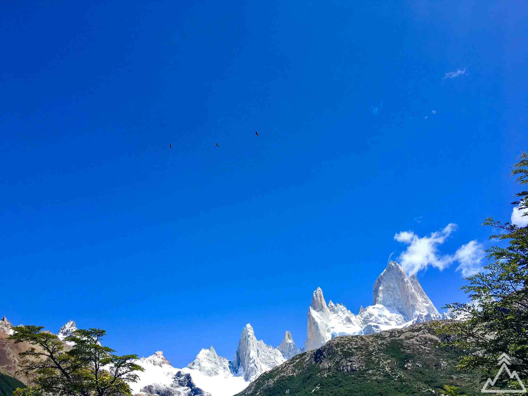 Fitz Roy and condors