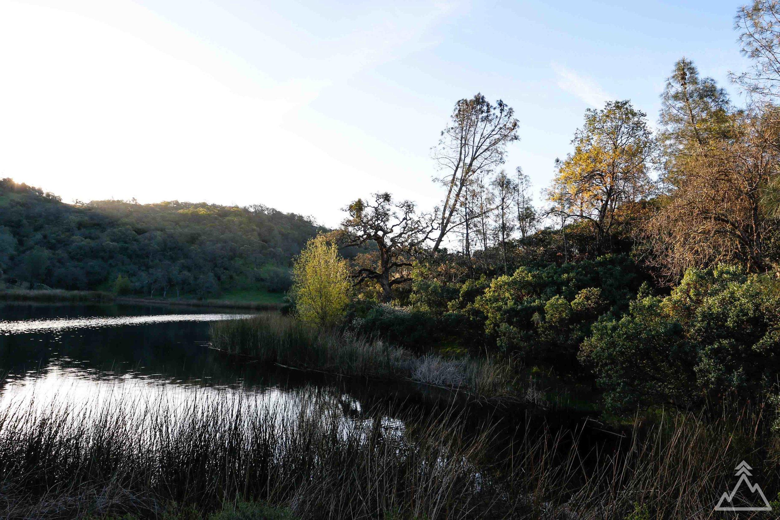 Coit Lake Sunrise