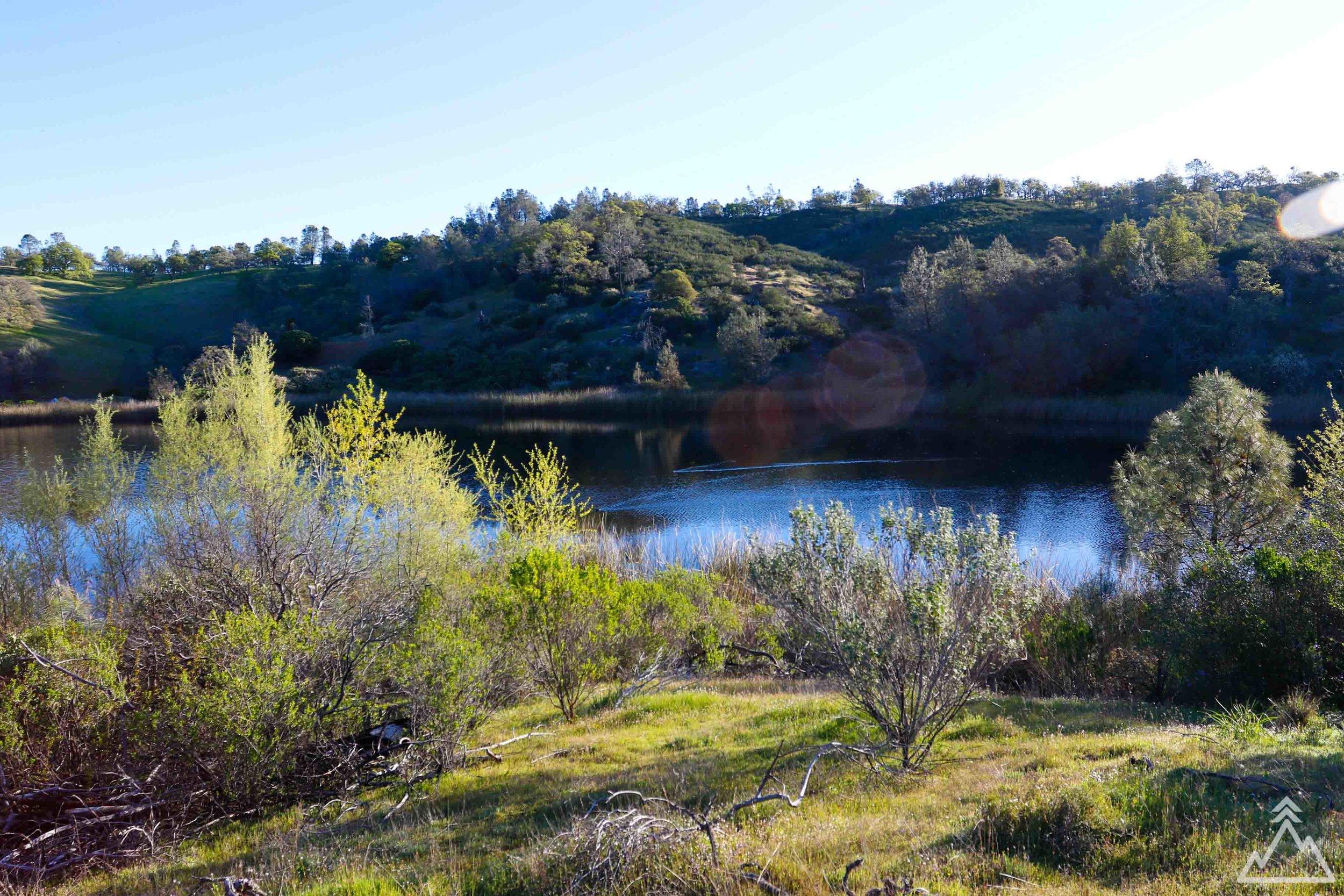 Coit Lake, Henry W. Coe
