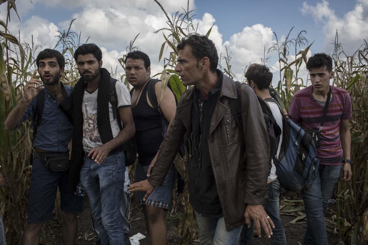 12_Migrants_low_website_.jpg
