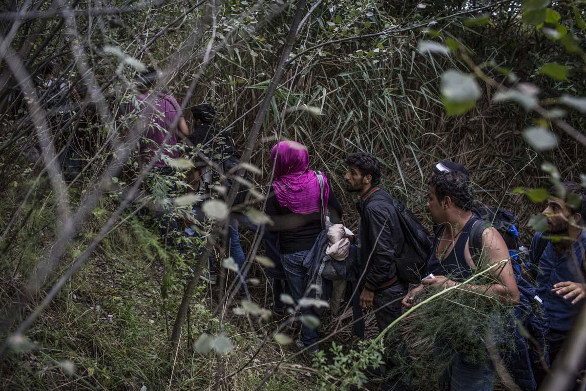 18_Migrants_low_website_.jpg
