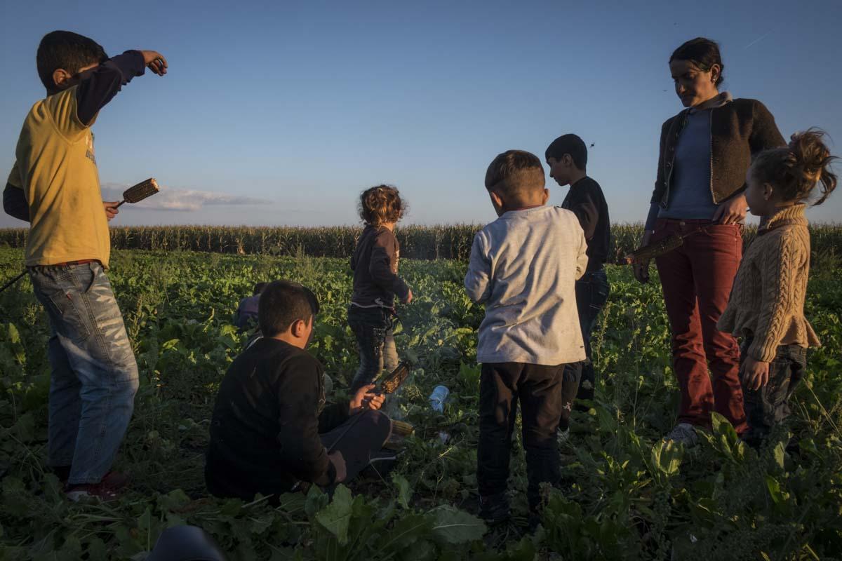 27_Migrants_low_website_.jpg