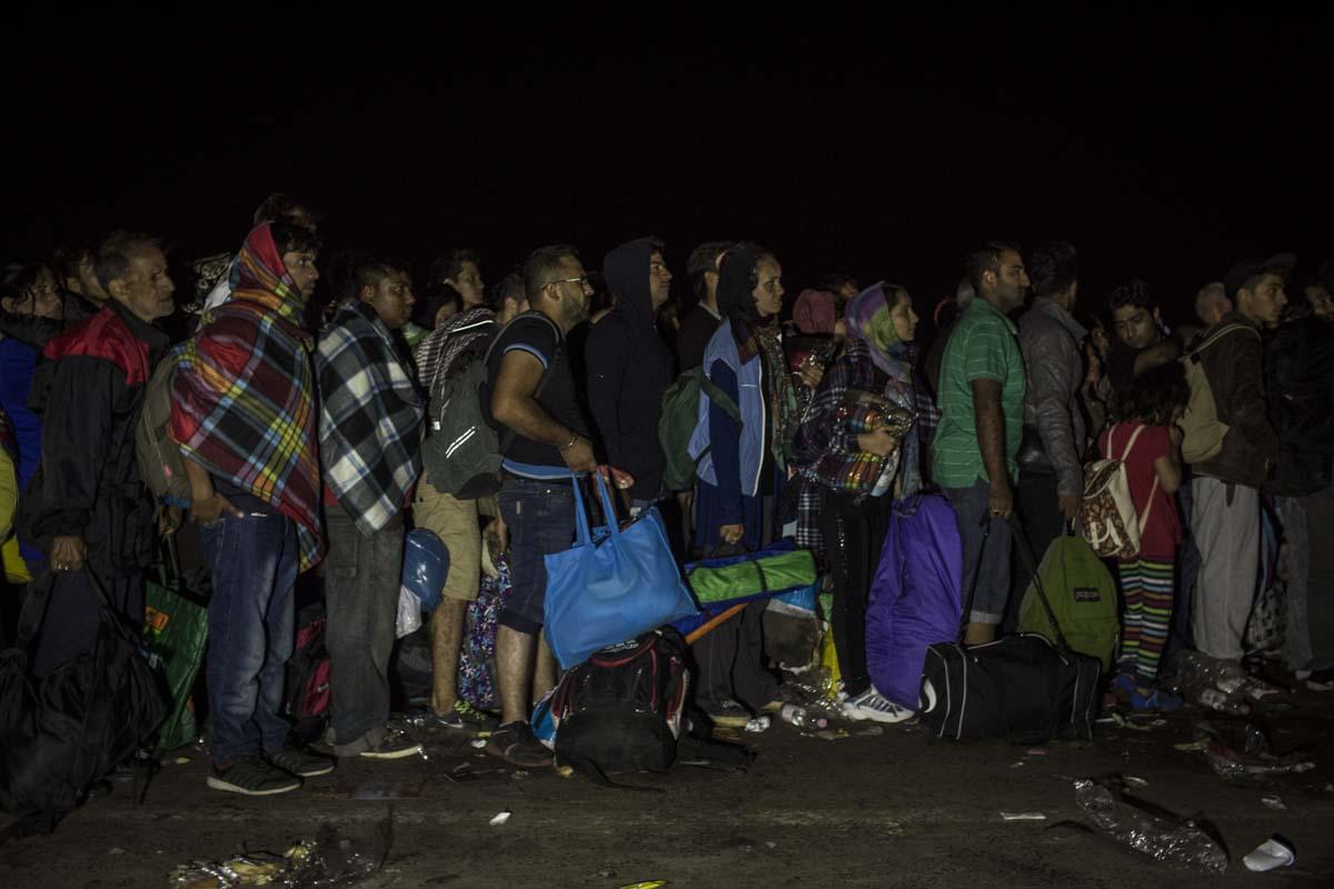 31_Migrants_low_website_.jpg