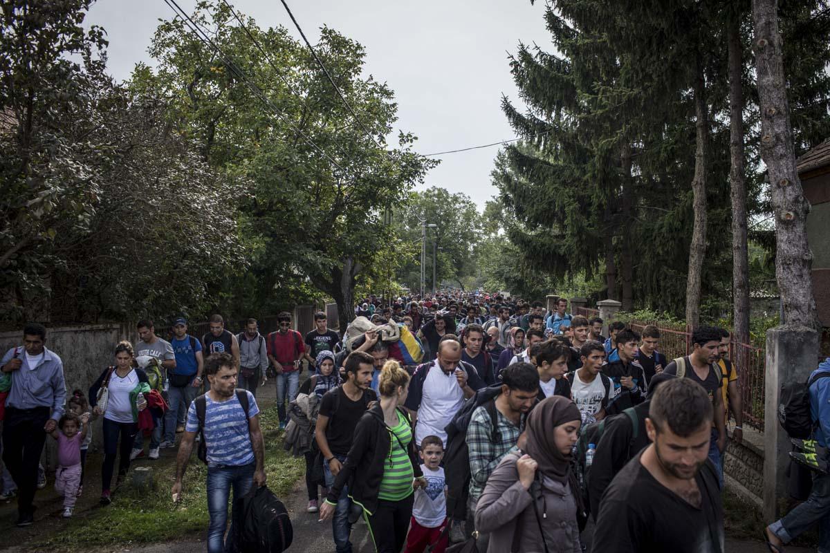 36_Migrants_low_website_.jpg