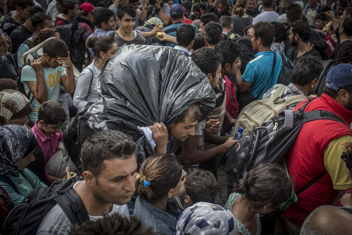 35_Migrants_low_website_.jpg
