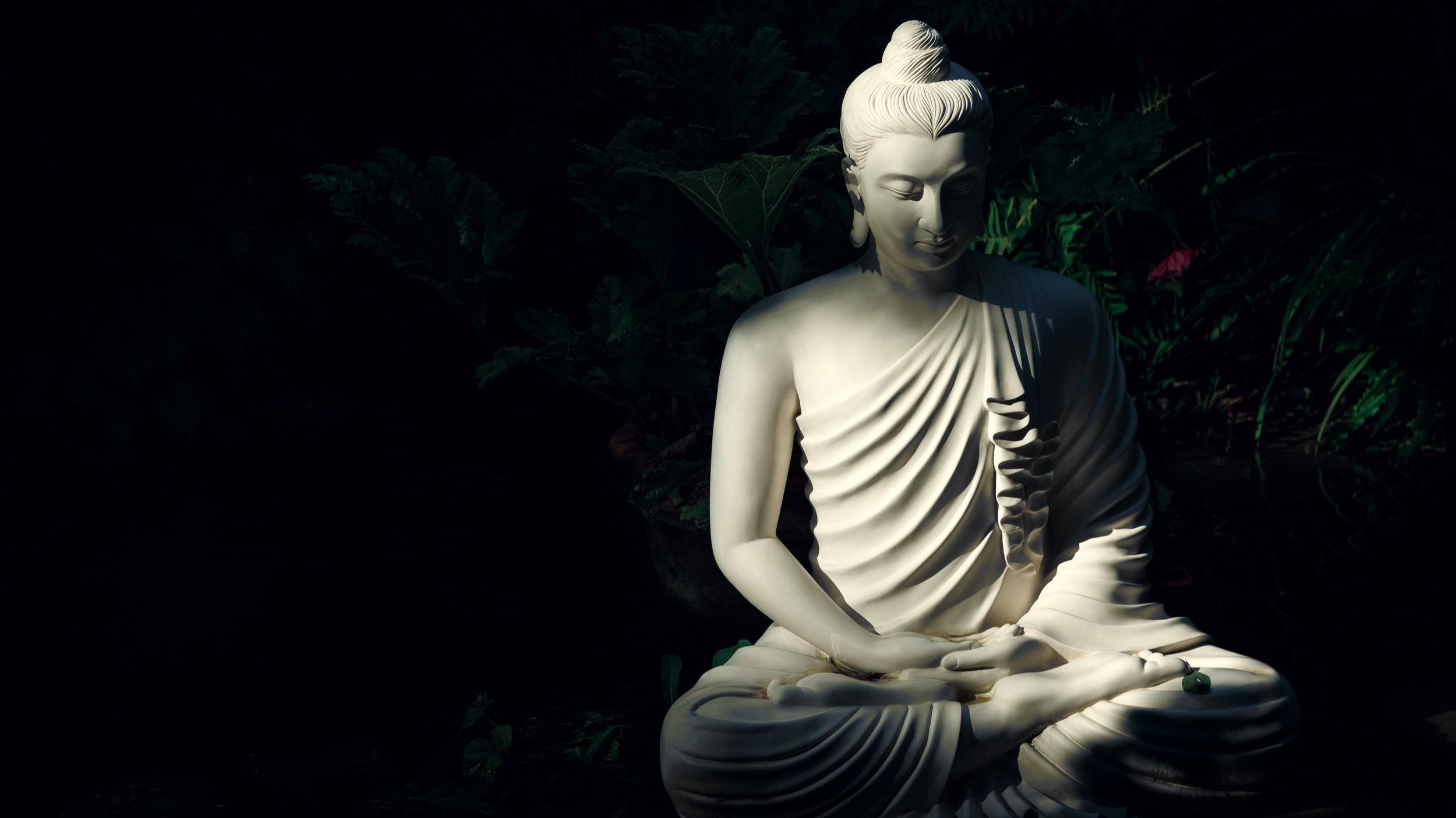Buddha+Unsplash.jpg