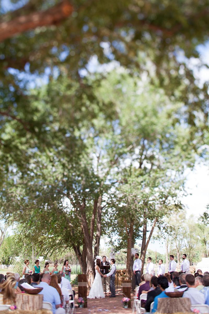 A beautiful day for an outdoor wedding in Albuquerque, New Mexico