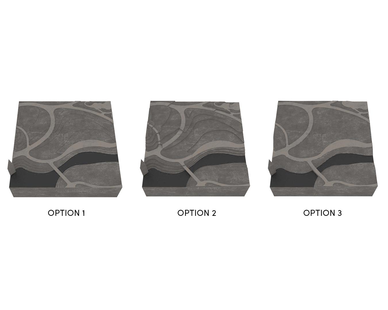 Topo Options.jpg
