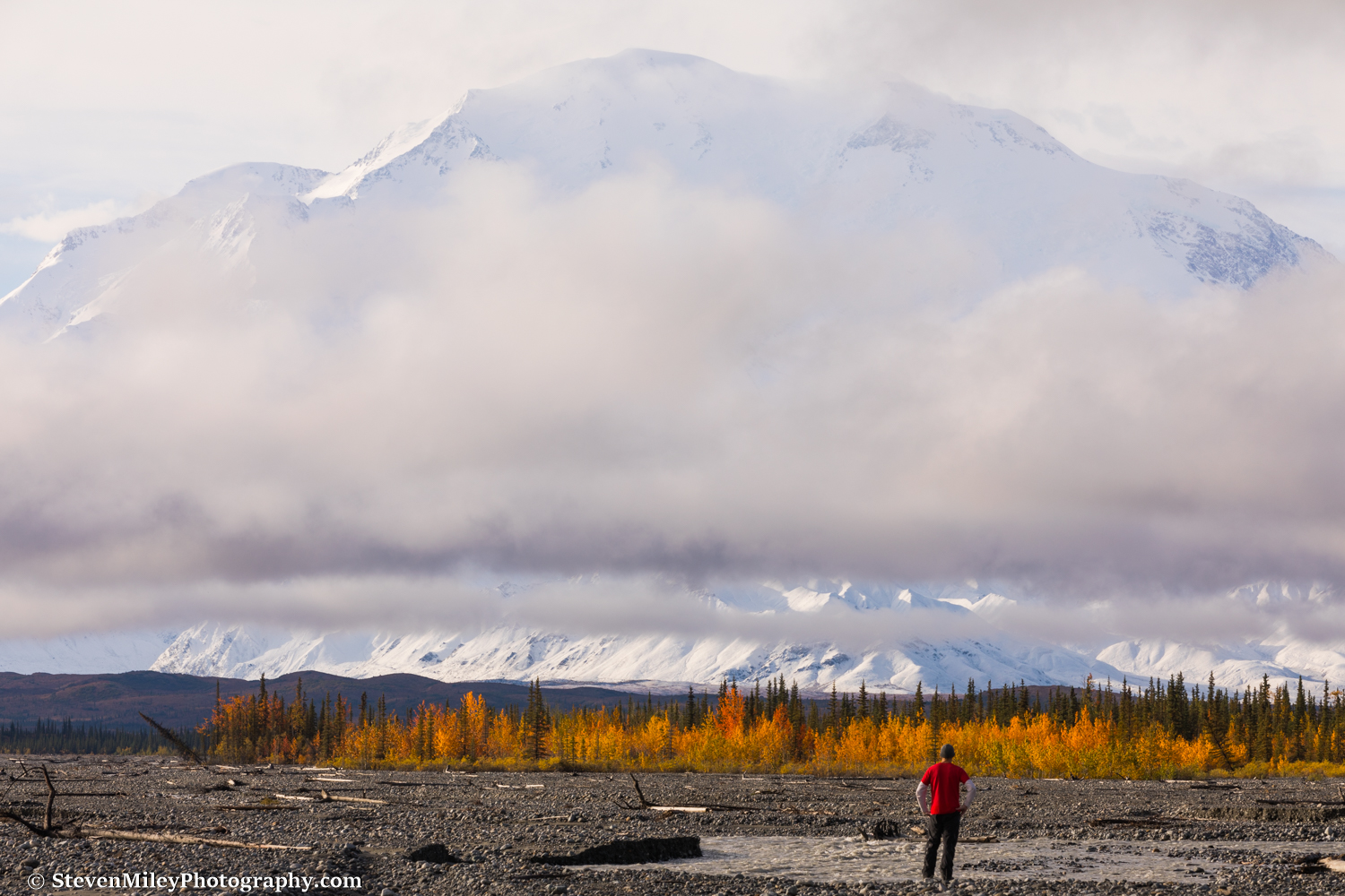 Denali sporting fresh snow on a brisk fall morning, viewed from my campsite at the confluence of the Muddy River and McKinley River.