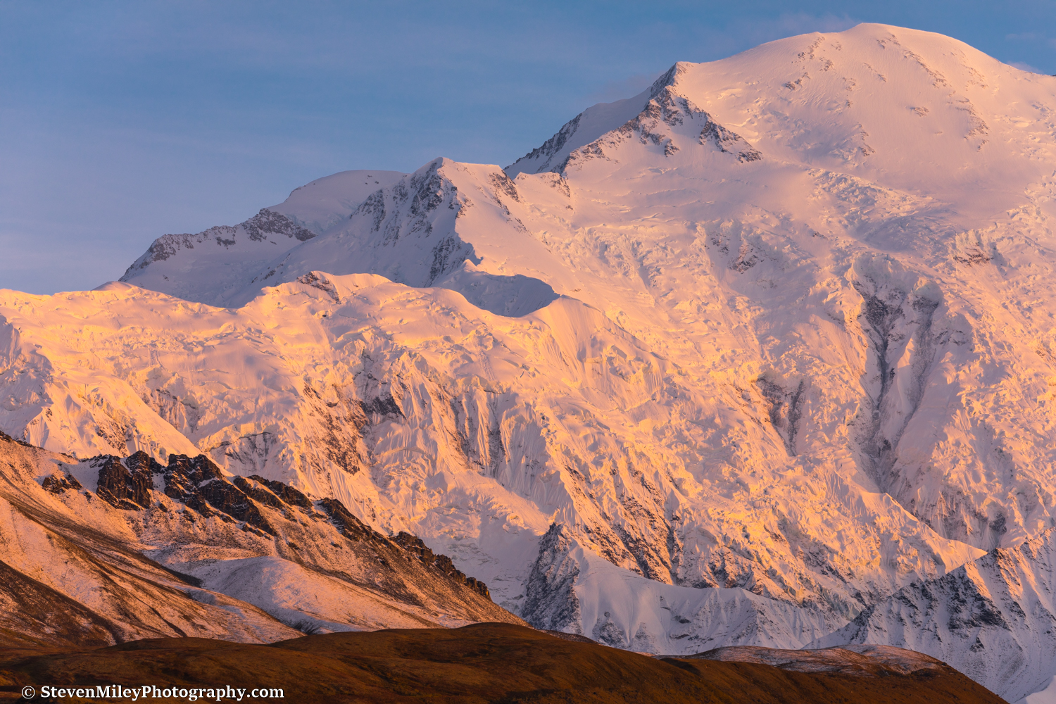 Denali's Pioneer Ridge and North Peak are lit up at sunset.