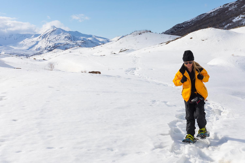 Snowshoeing Over Castner Glacier