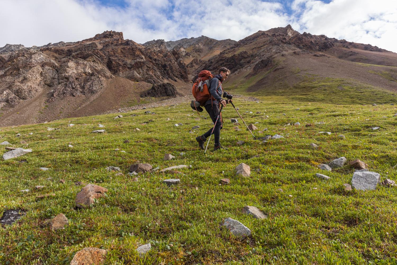 Alpine Trekking - Alaska Range