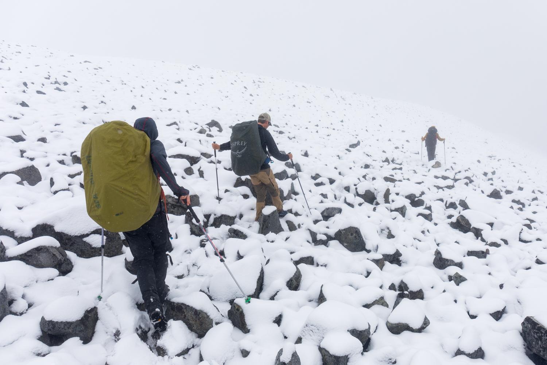 Summer Snow - Descending From A Pass In The Alaska Range