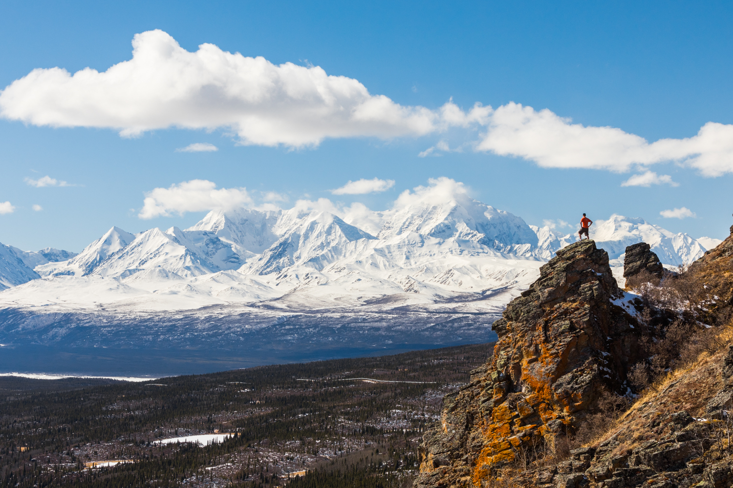 Eastern Alaska Range Viewed from Donnelly Dome