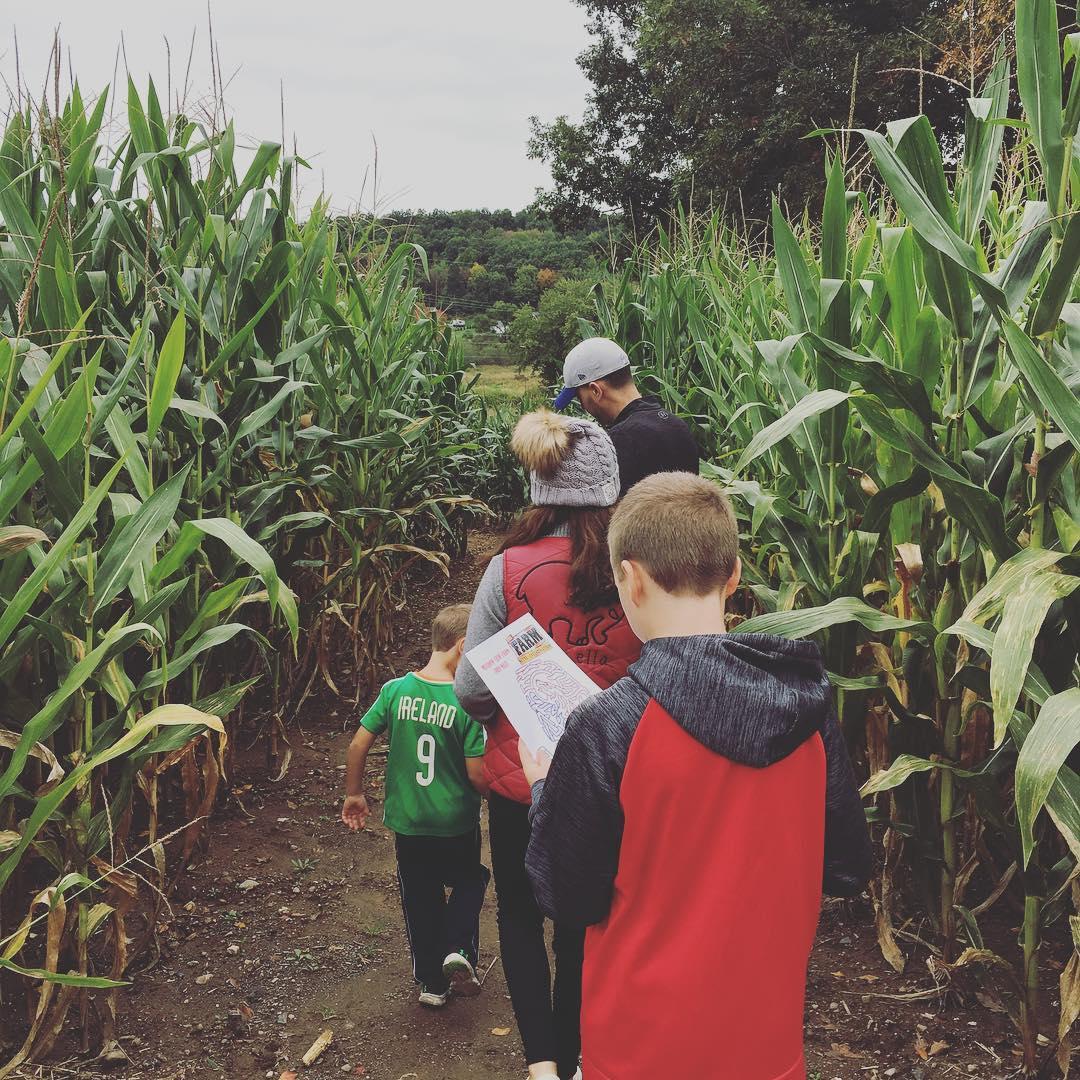 2018 corn maze SKGM.jpg