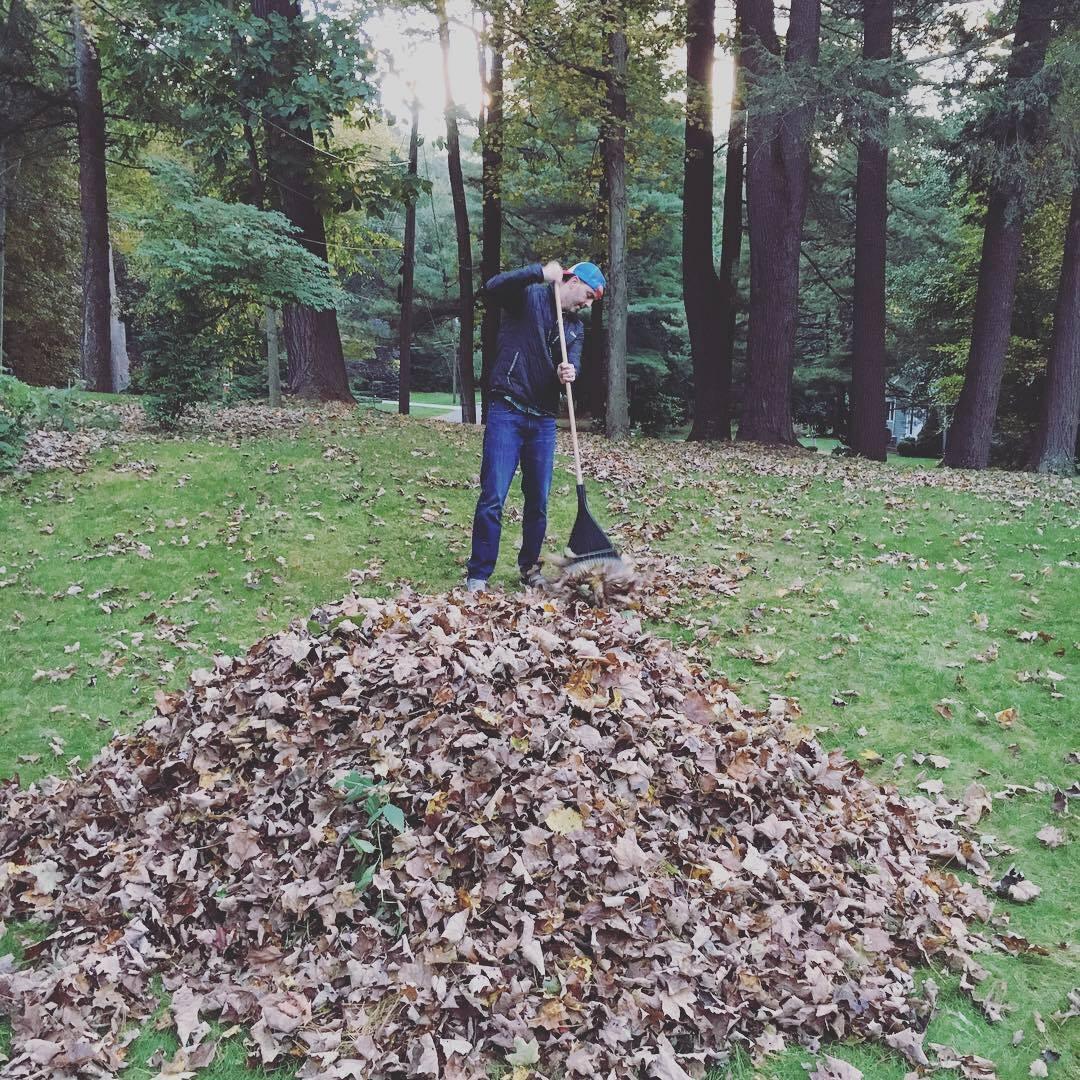 leaf pile 2018.jpg