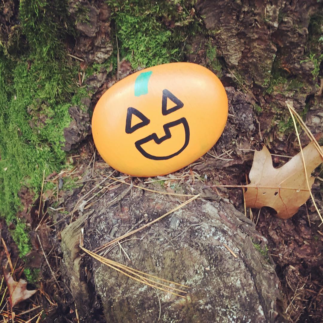 2018 fall pumpkin kindness rock.jpg