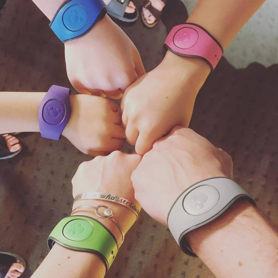 2019 disney wristband pic.jpg