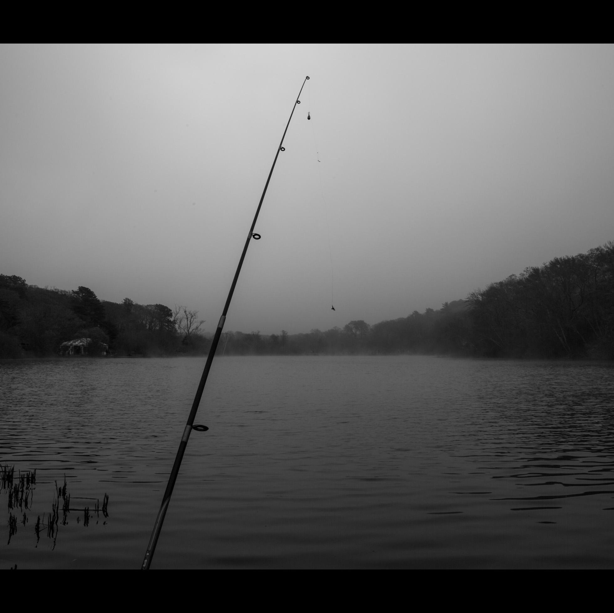 5.9 FOGGY FISH