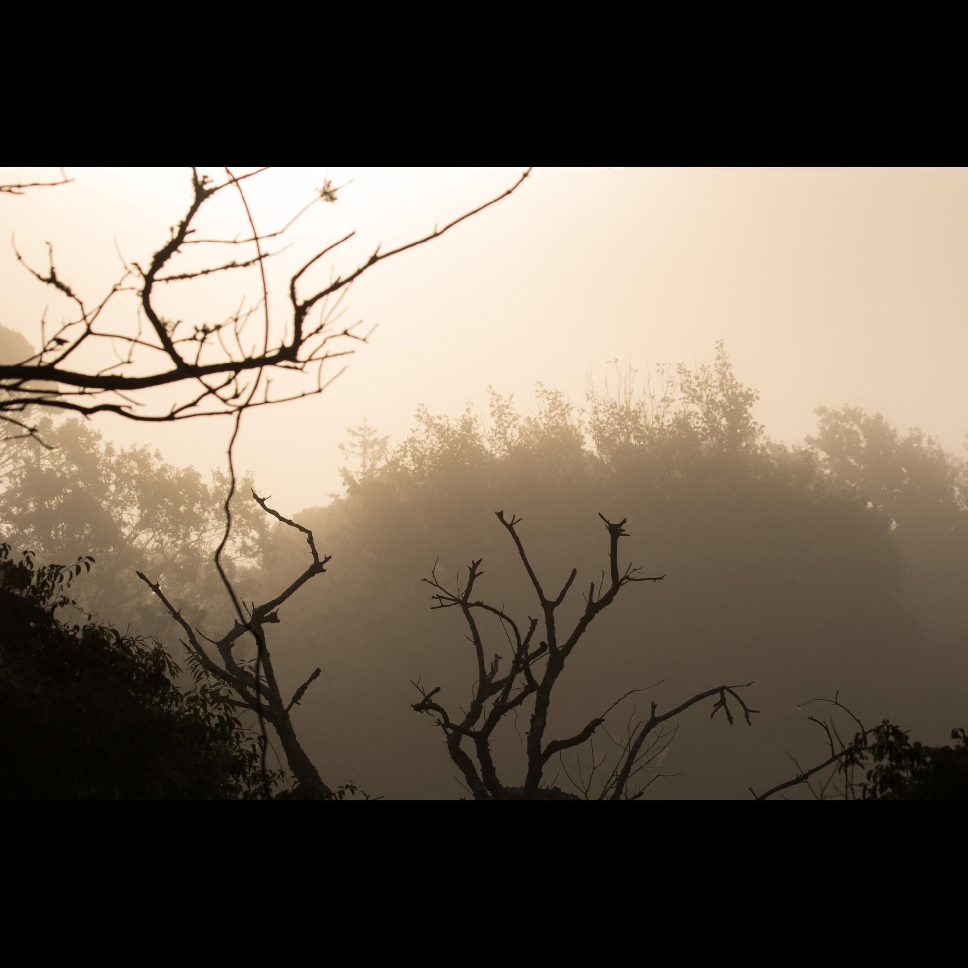 9.20 SUN AND FOG
