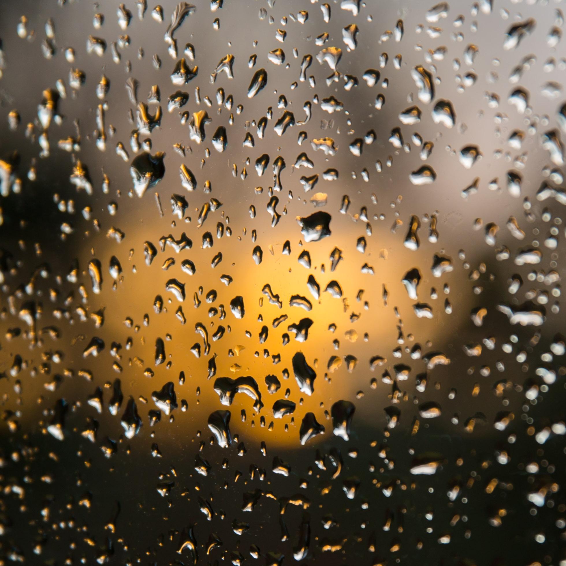 12.18 RAIN GLOW