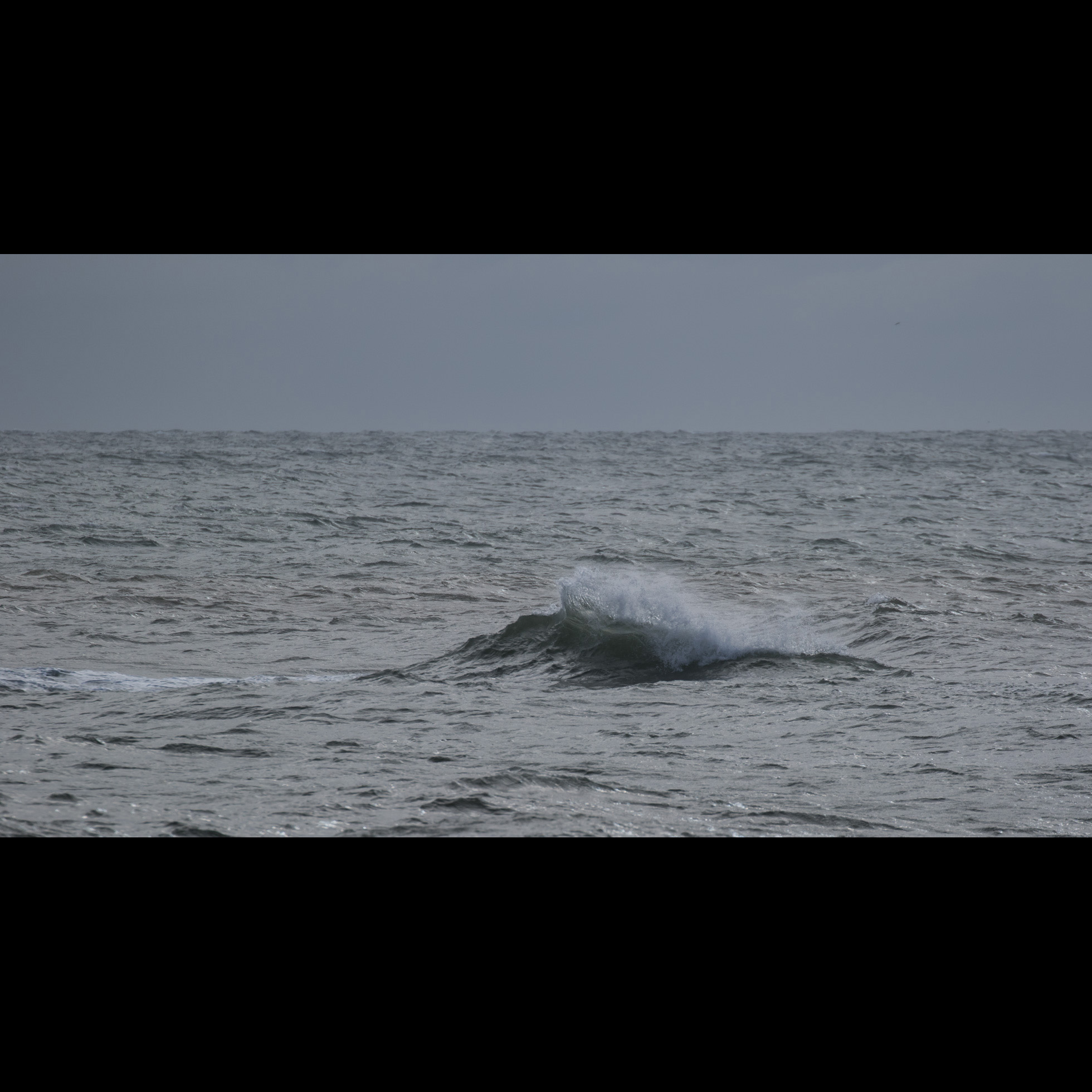 1.24 LONE WAVE