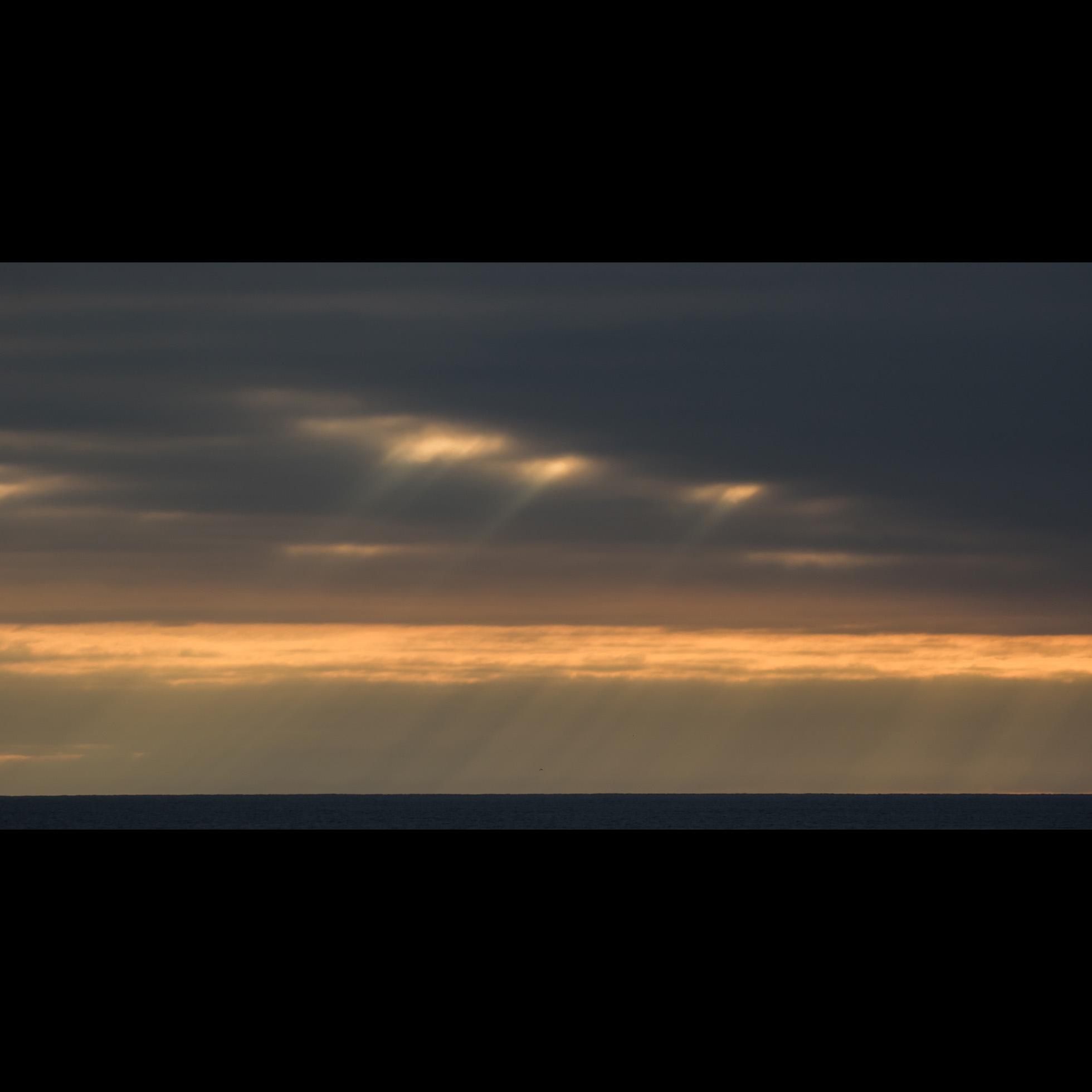1.19 SOUTH BEACH LIGHT