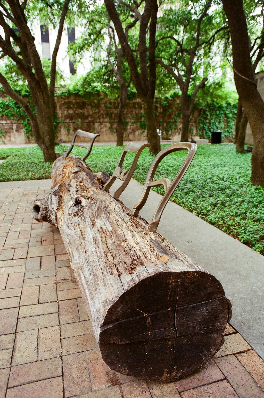 Tree Trunk Bench - by Jurgen Bey, Droog Design, The Netherlands (1999)
