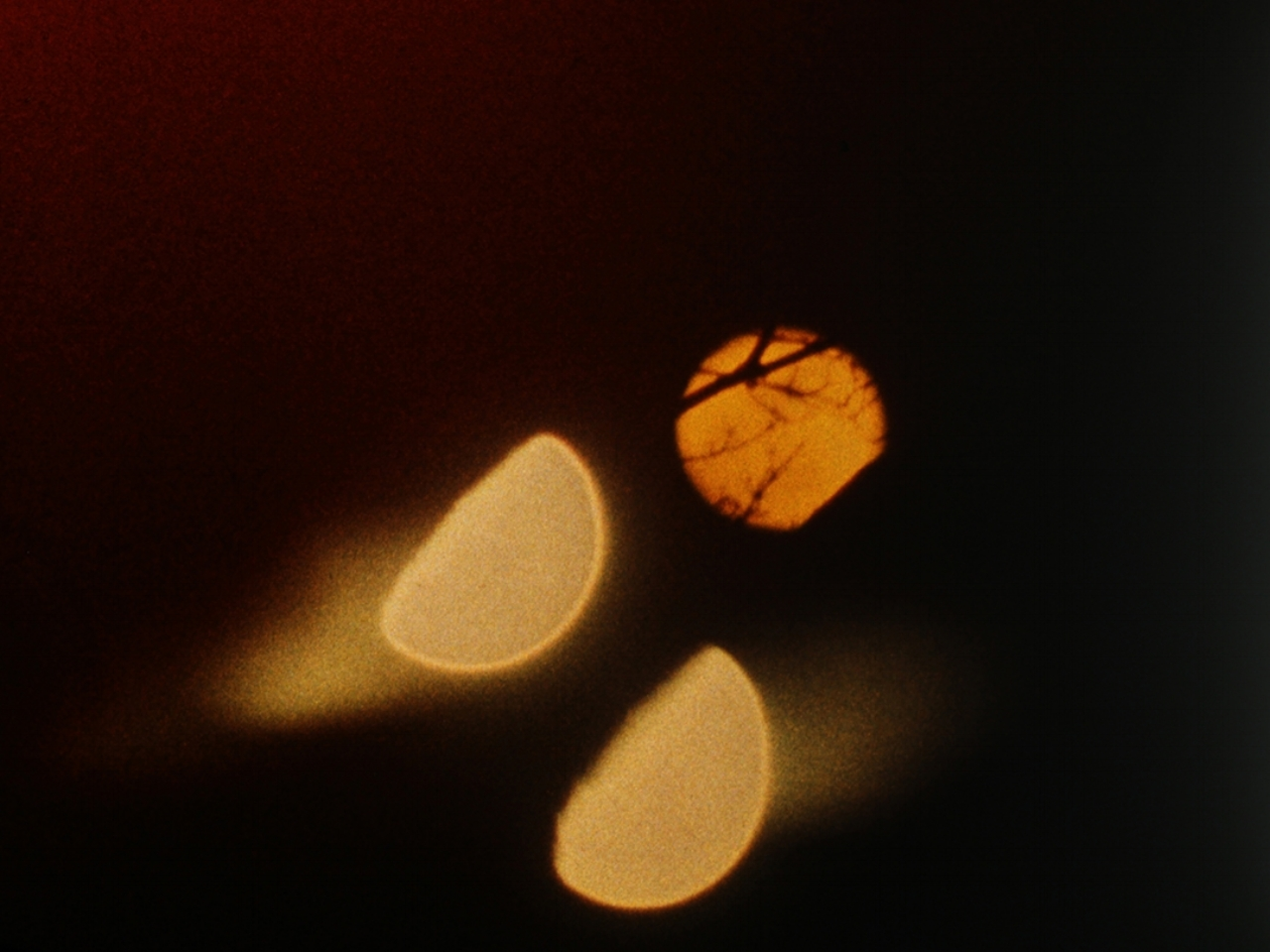 Lunar Almanac  Malena Szlam  2013 / 4 minutes / Chile/Canada / 16mm / silent   Lunar Almanac  initiates a journey through magnetic spheres with its staccato layering of single-frame, long exposures of a multiplied moon. Shot in 16mm Ektachrome and hand processed, the film's artisanal touches are imbued with nocturnal mystery. -Andréa Picard
