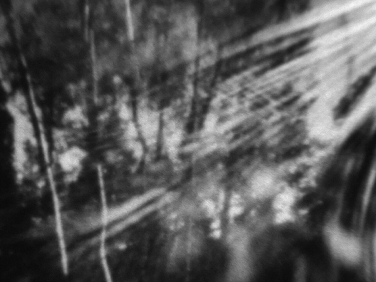 """Under the Shadow of Marcus Mountain     Robert Schaller   2011 / 6 minutes / USA / 16mm / silent  Shot entirely with a homemade pinhole camera and edited largely in-camera through the use of a rhythmic score. The structures of our thought filter what we see, and in fact there is no seeing apart from those structures. This film is part of an ongoing project to show where I am in a (here, natural) landscape in a way that reflects those structures of thought. It is """"hypnogogic,""""not so much perceptually (although to some extent that too) as conceptually. Our eyes see constantly, but what do we actually notice? That vision is excessive, wasteful, even; in paring down, it becomes both more spare and more concentrated. -RS"""