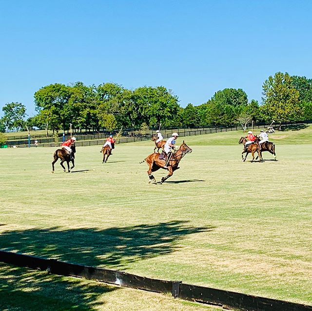 Polo Day 3. #tennessee #poloweekend