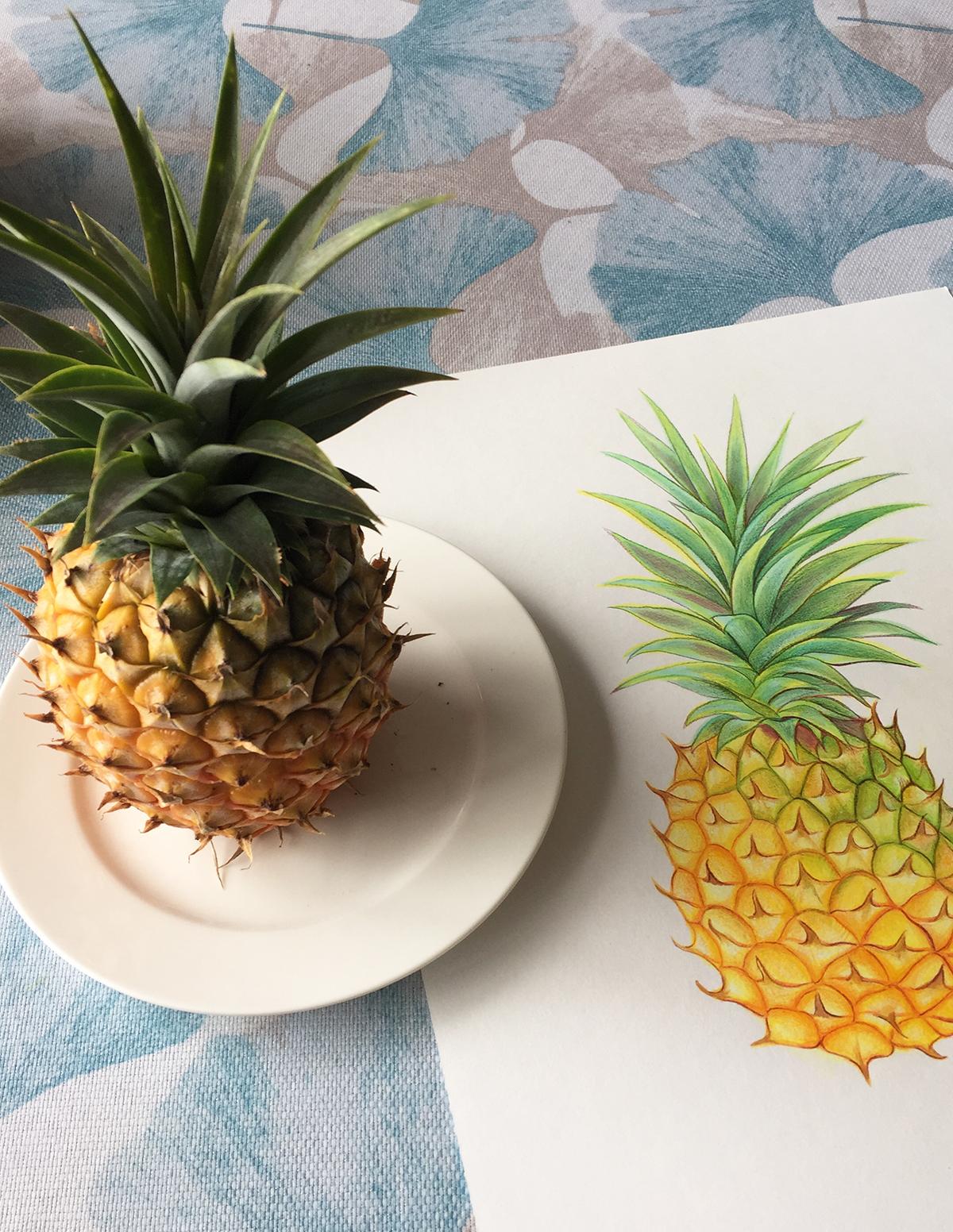 AnnaLloyd_Pineapple.jpg