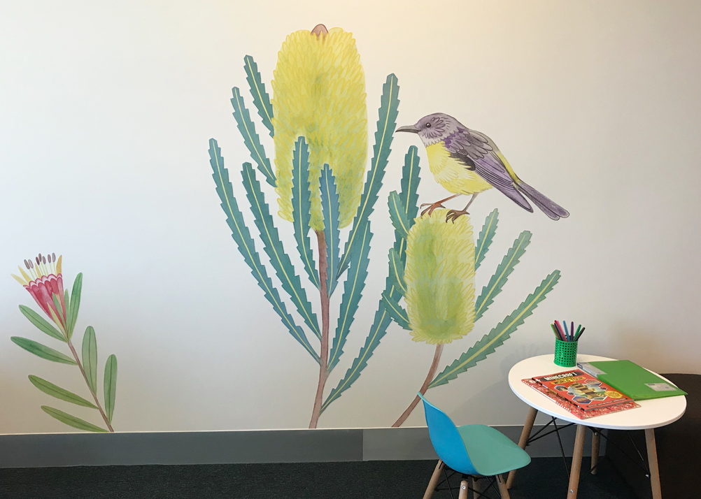Banksia flowers and Yellow Robin in one of the consultation rooms.