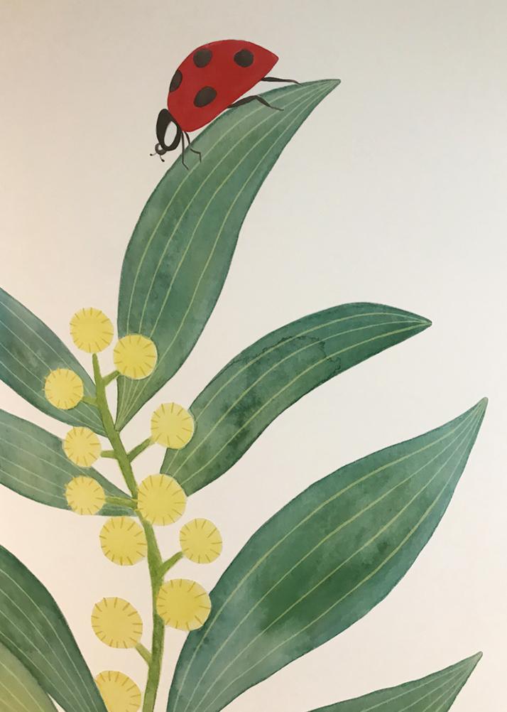 Close-up of ladybug on wattle.