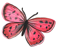 AnnaLloyd_pinkbutterfly_blog.jpg