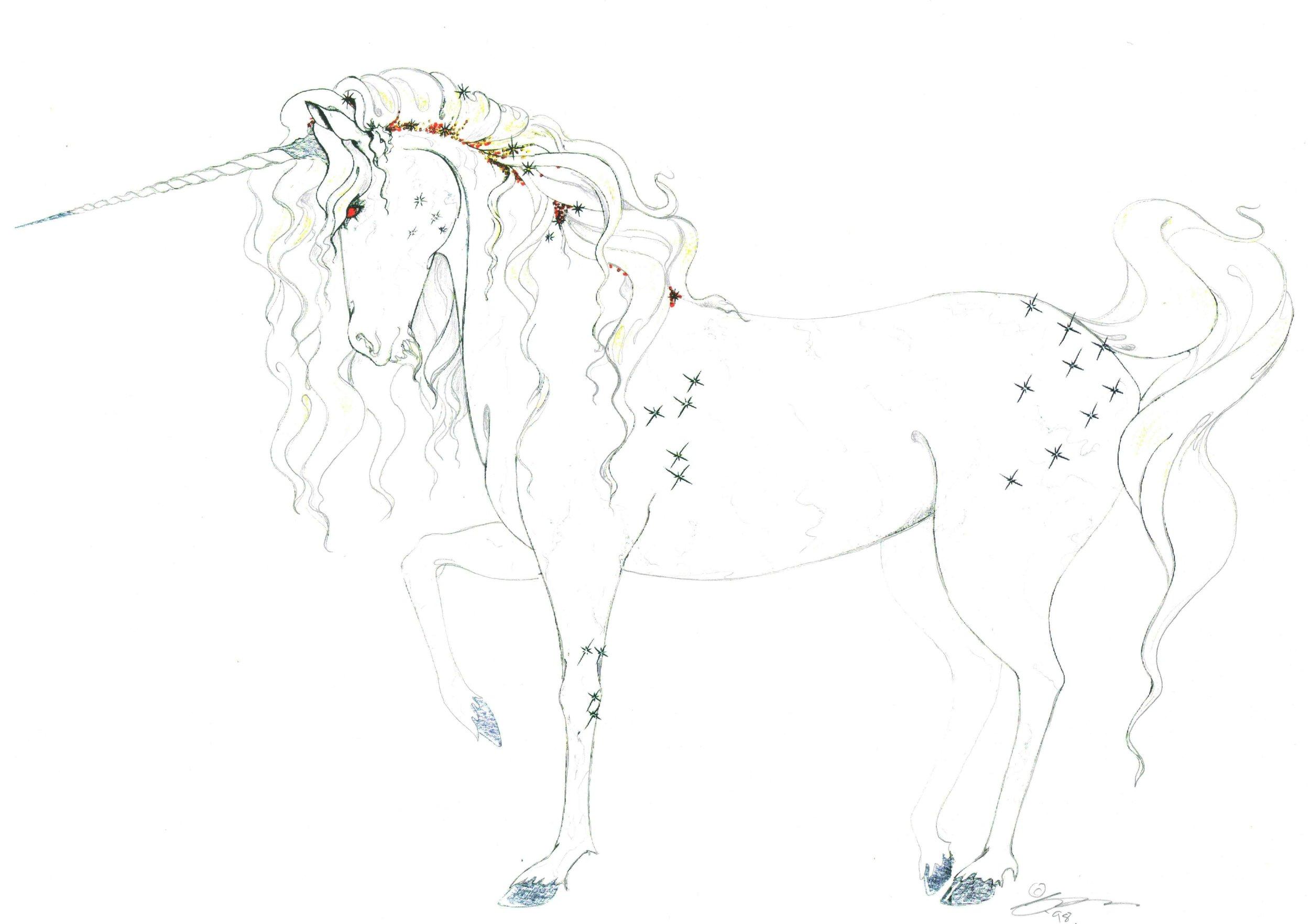 Fibre Optic Unicorn Concept 3.jpg