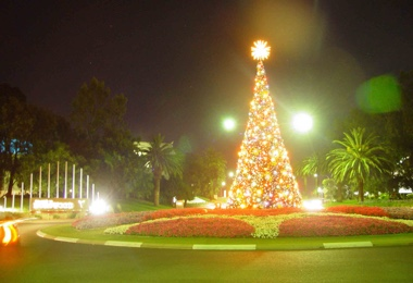 Christmas Decorations - Burswood Casino Entry Tree.jpg