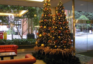Christmas Decorations - Inside Govenor Stirling Hotel.jpg