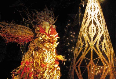 Christmas Decorations - Wildflower Fairy Queen.jpg