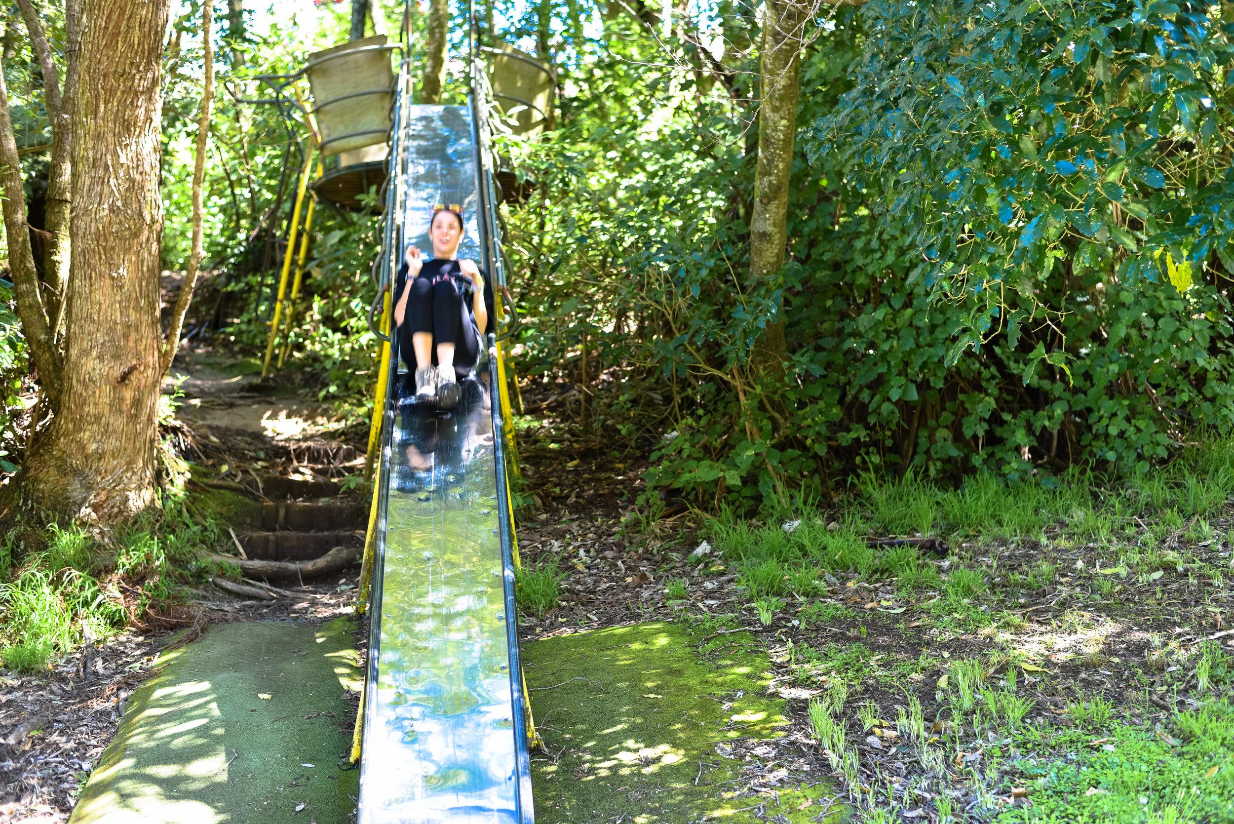 Bad capture on my part.Brigid enjoying herself on the slide