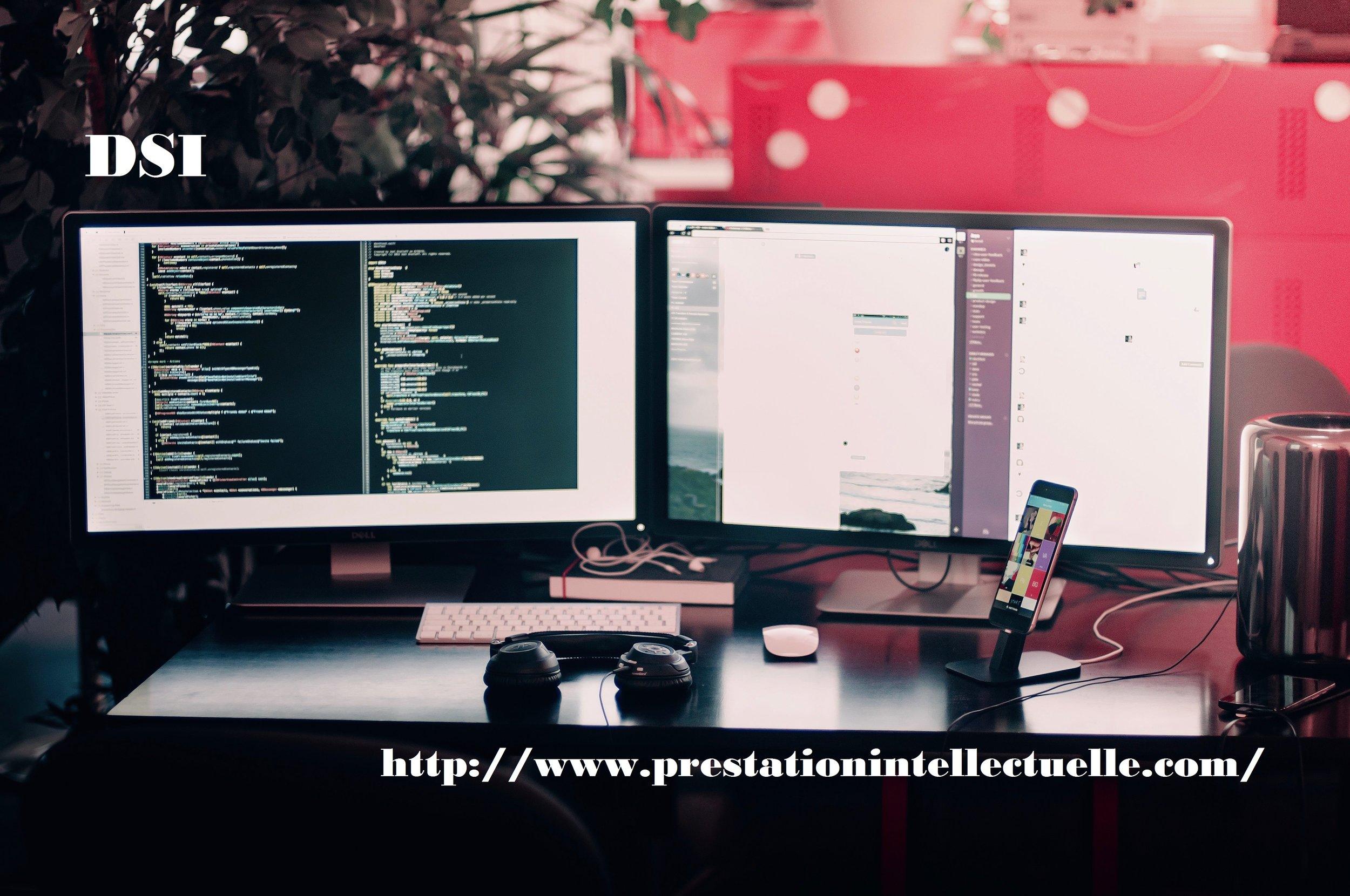 DSI-blog.jpg