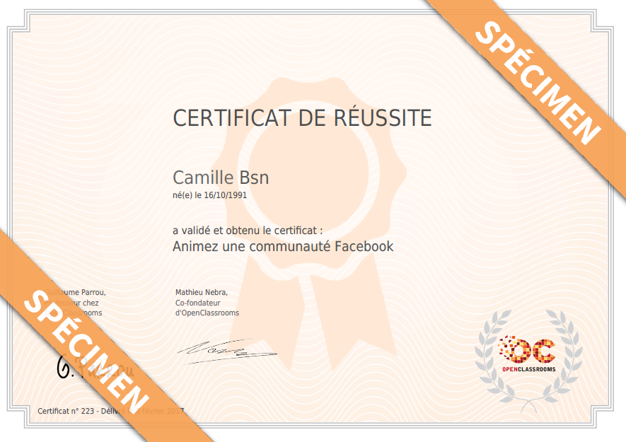 Certification Animation Facebook - OpenClassroom