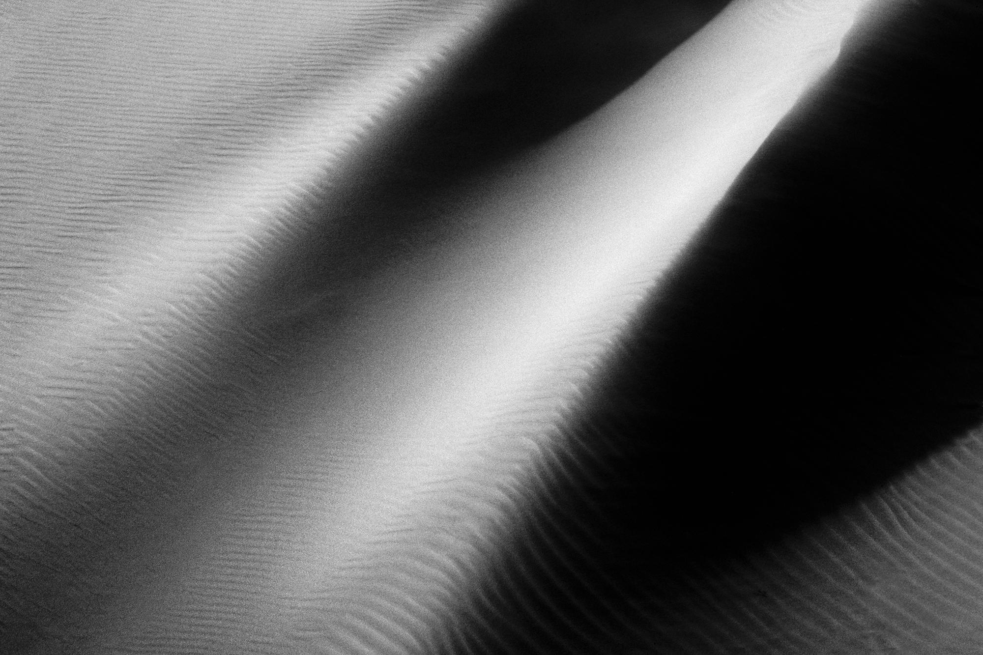 2011-9-10 Dune Detail No 39 - Final 2-3-2012 copy.jpg