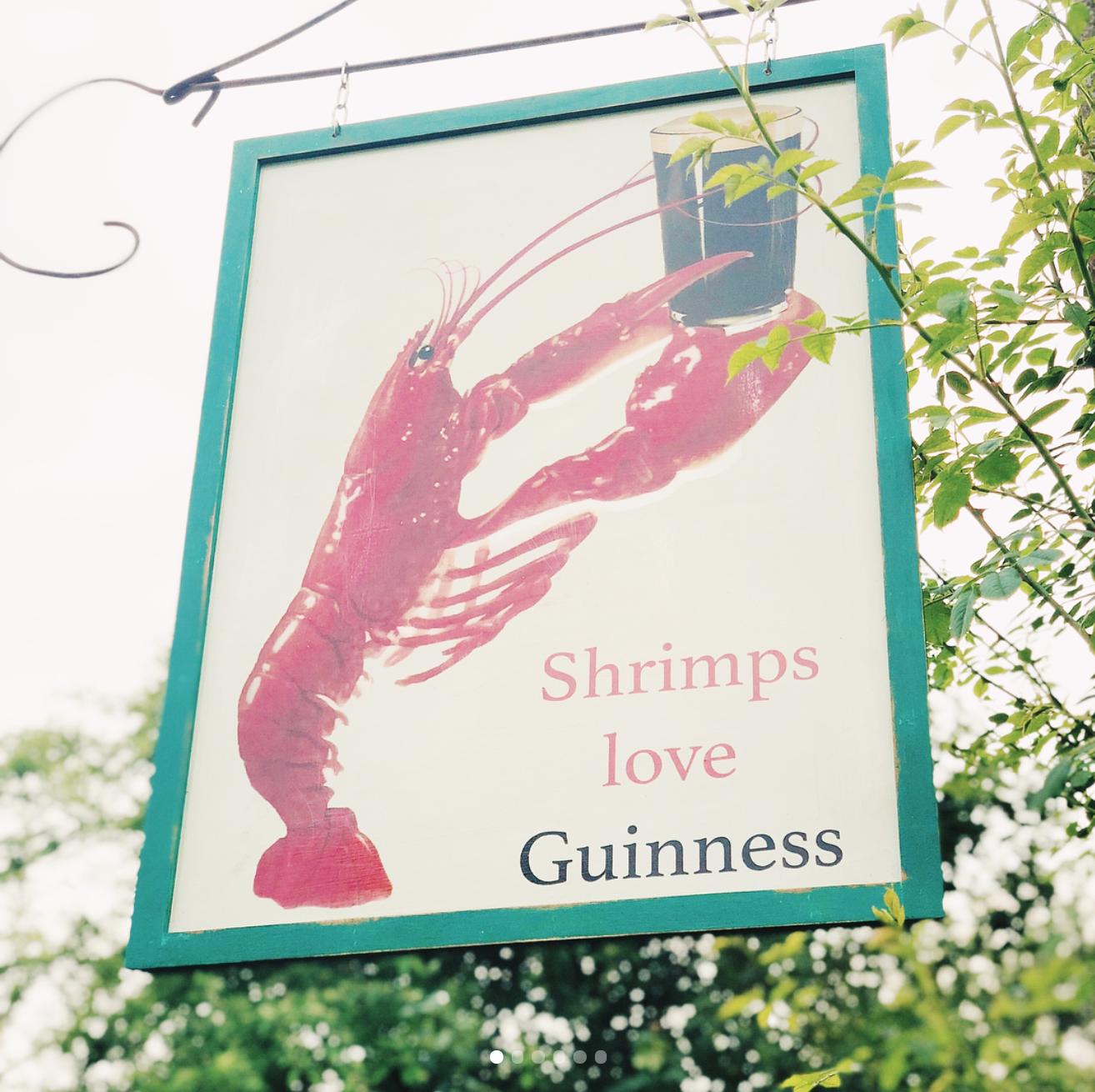 'Shrimps love Guinness' @scarcurtis