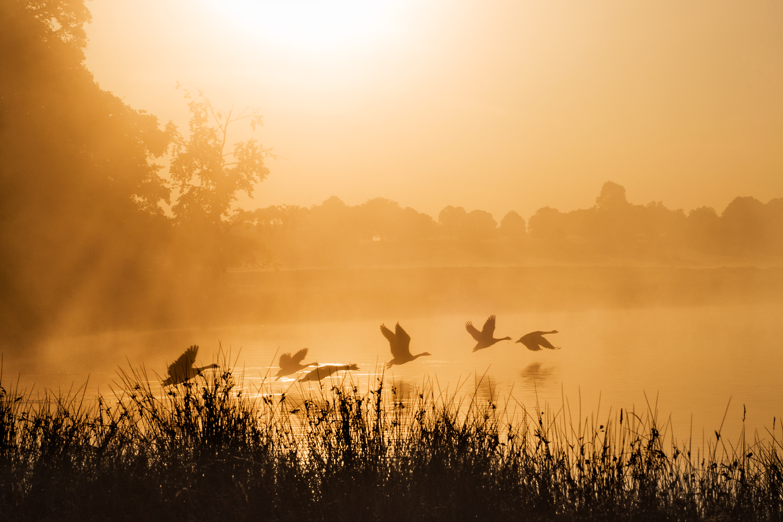 Ida_Hollis_Photography_Nature025.jpg