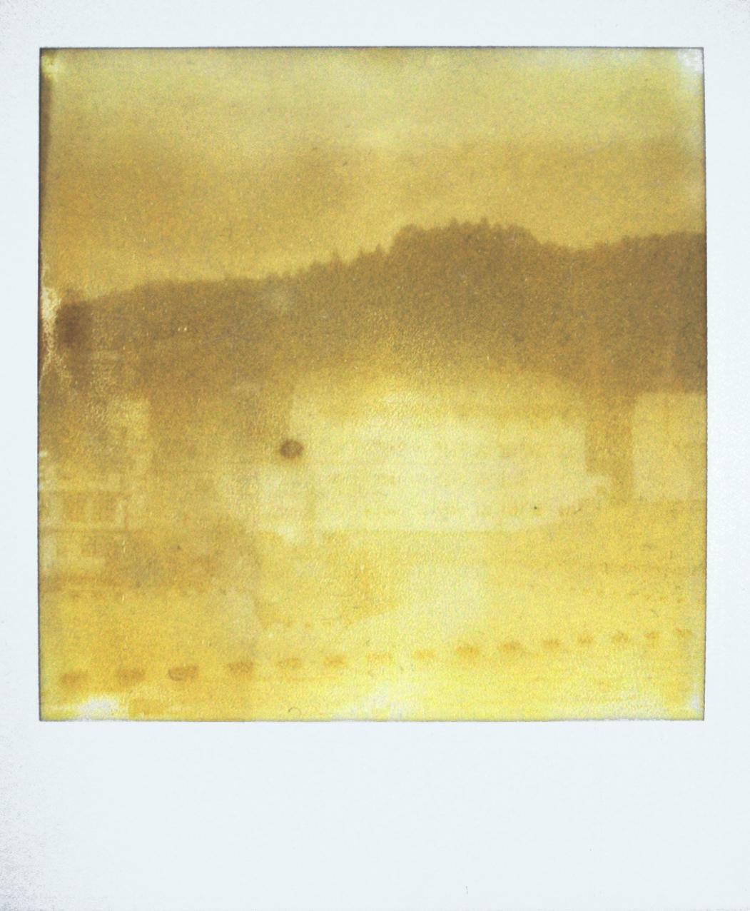polaroid_Viveiro3.jpg